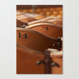 fourteen and counting. Canvas Print