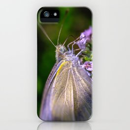 Cabbage White Butterfly, Macro Photograph iPhone Case