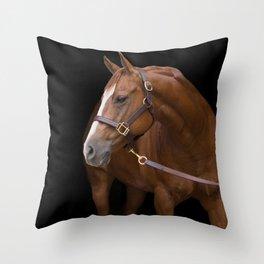 Ricky Bobby Throw Pillow