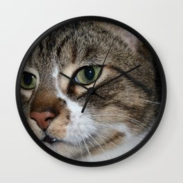 Beautiful Cat Wall Clock