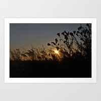sublime Art Prints featuring Sublime by Dorothy Pinder
