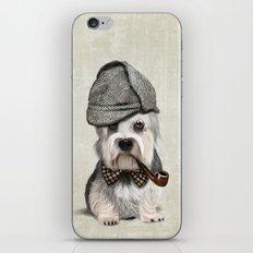 Sir Dandie Dinmont Terrier iPhone & iPod Skin