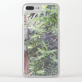 Yew Tree Clear iPhone Case