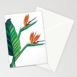 Watercolor Bird of Paradise Stationery Cards