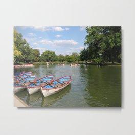 Lac Daumesnil Metal Print