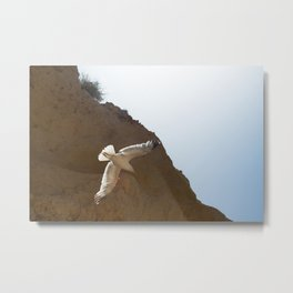Seagull in the sky Metal Print