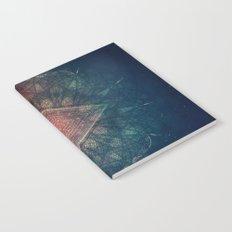 zpy yyy tryy Notebook
