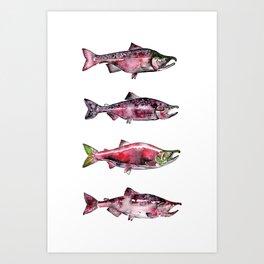 Here Fishy Fishy Art Print