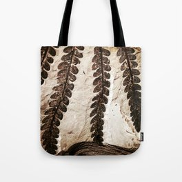 Fern Fossil Tote Bag