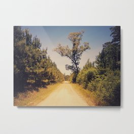 tree on the road Metal Print
