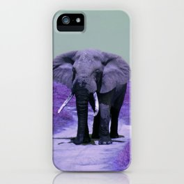 African Bull Elephant in Purple iPhone Case