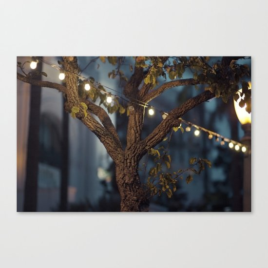 Isn't it a lovely night? Canvas Print