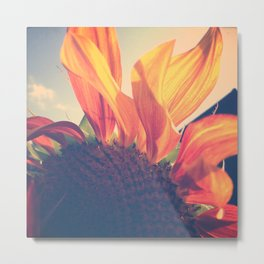 Sunflower 1 Metal Print