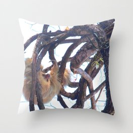Two-toed sloth and orchids in Costa Rica Throw Pillow