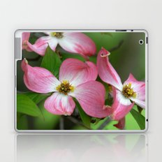 Pink Dogwood Laptop & iPad Skin