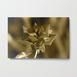 """Rose Water"" by ICA PAVON Metal Print"