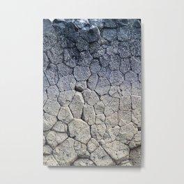 Nature's building blocks Metal Print