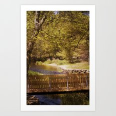 Footbridge Art Print