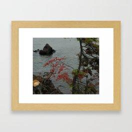 3920 Framed Art Print