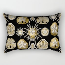 Ernst Haeckel - Scientific Illustration - Echinidea (Sea Urchins) Rectangular Pillow