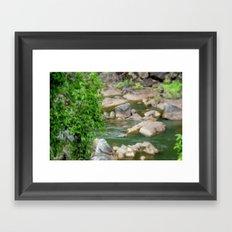 Freshwater Creek - Tropical Quensland Framed Art Print