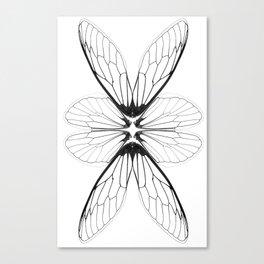 Cicada wings Canvas Print