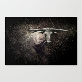 Of The Longhorn Canvas Print