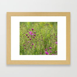 Early riser Framed Art Print