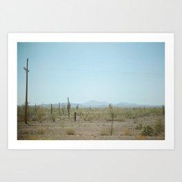 mexican desert  Art Print
