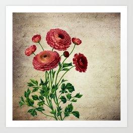 Macro Flowers 42 Art Print