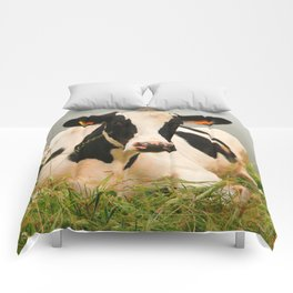 Holstein cow facing camera Comforters