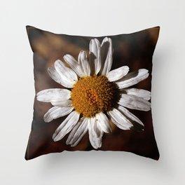 Colorado Wild Flower Throw Pillow