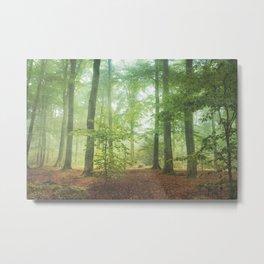 Hazy Summer Forest Metal Print