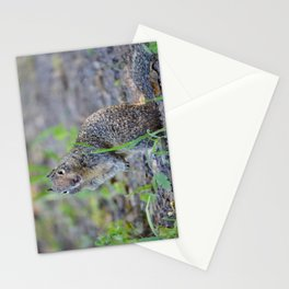 ground squirrel greeting Stationery Cards