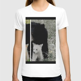 Black and White bears T-shirt