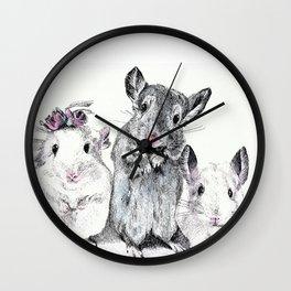 A family of Chinchilla Wall Clock