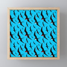 Frigate Birds Majestic Flight Framed Mini Art Print