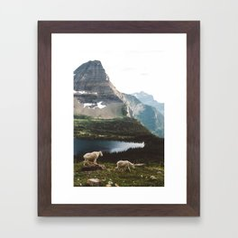 A Walk With The Mountain Goats Framed Art Print