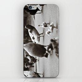 Quack iPhone Skin