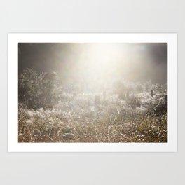 Country Mist Art Print