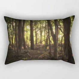 In the Shadows of the Sun Rectangular Pillow