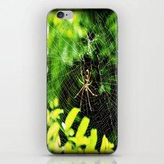 Webs Of Green iPhone & iPod Skin