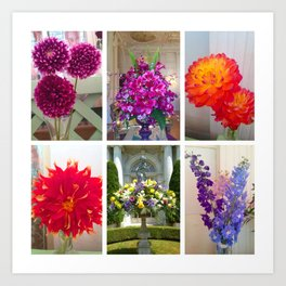 Flower Bursts Art Print