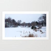 Snow in Central Park VIII Art Print
