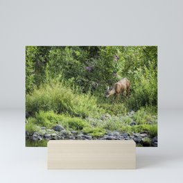 Young Doe Among the Flora, No. 2 Mini Art Print