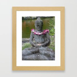 Hawaii #5 Framed Art Print