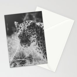 Panthera pardus Stationery Cards