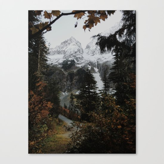 Cascade River Rd Canvas Print