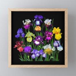 Iris Garden - on black Framed Mini Art Print