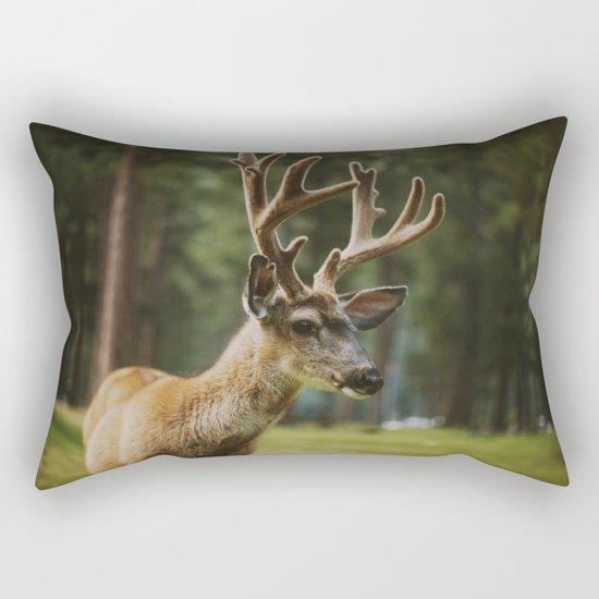 Joseph Rectangular Pillow